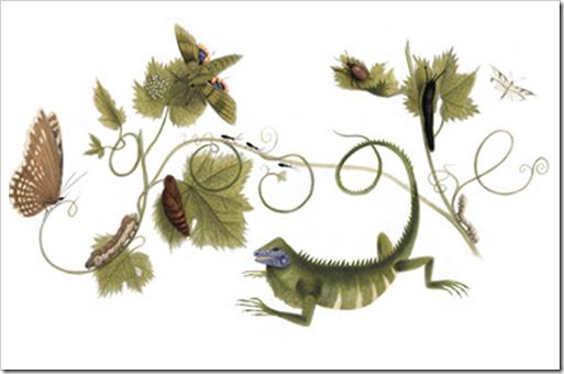 自然科学者「マリア ジビーラ メーリアン」の生誕366周年を記念したGoogleロゴ