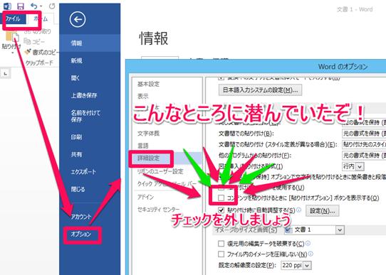Word2013「貼り付けオプション」を無効にする方法