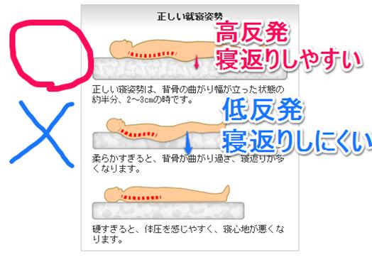 反発 (はんぱつ) - Japanese-Eng...