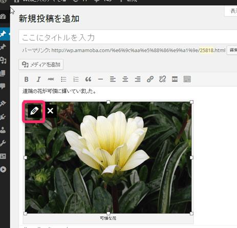 2014-04-25_14h21_27