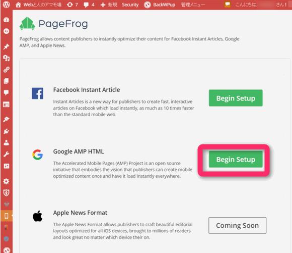 プラグイン PageFrog のGoogle AMP HTML のセットアップ