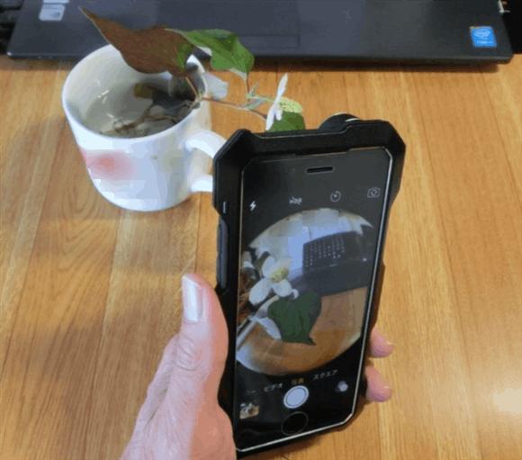 魚眼レンズを搭載したiPhoneでドクダミ草を撮影。