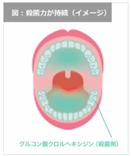 コンクール F が口内にとどまる仕組み。