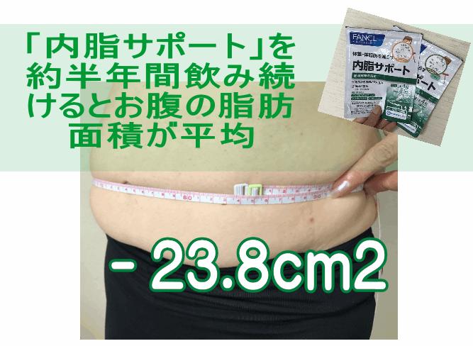 「内脂サポート」を24週間のみ続けると、脂肪面積が平均 マイナス23.8平方センチメートル減少することが判明している。