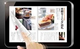 ガラパゴスのホームタイプ「10.8インチ」はお勧めメディアタブレットだ。