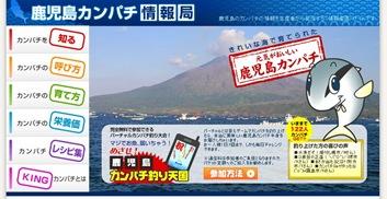 本物の養殖jカンパチをケータイ(携帯)で釣り上げられる期間限定の無料ゲーム