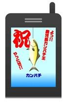 鹿児島カンパチ釣り天国です