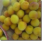 梅酢の成分「クエン酸と梅酢ポリフェノール」の通販、飲む梅干しは疲労軽減に効果