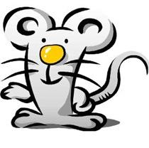 ネズミの楽園の実験